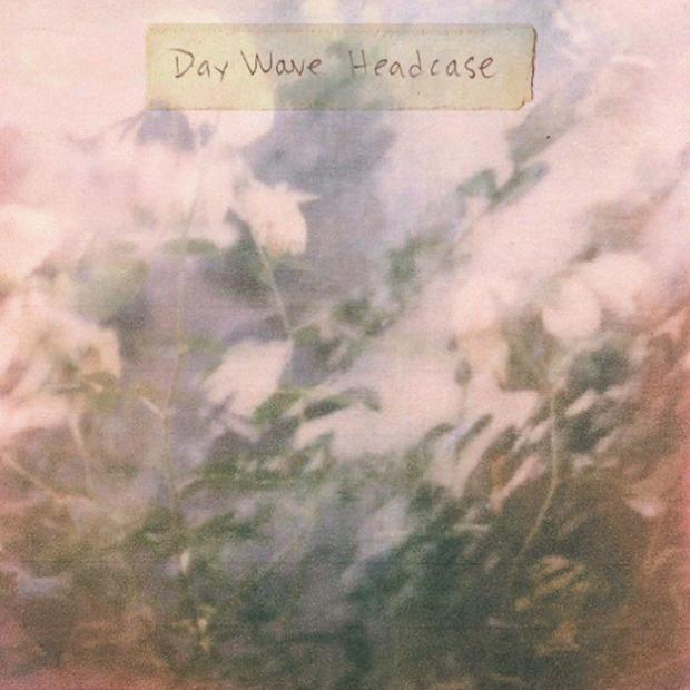 daywaveheadcase